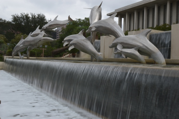 Dolphins at the Florida State Capitol