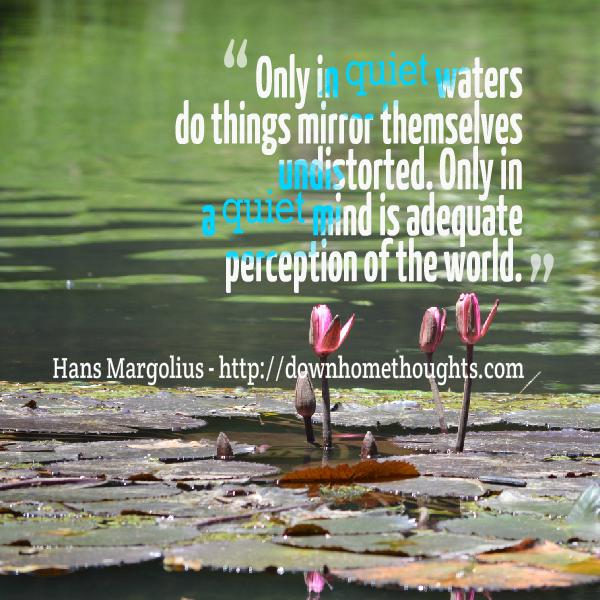Quote Margolius on Quiet